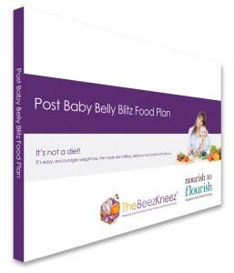 Post-Baby-Food-Plan-3DMockup
