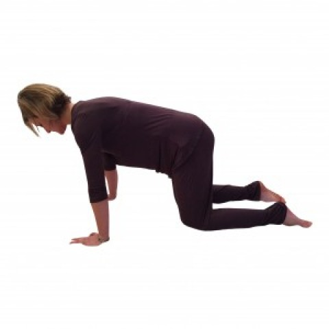 Postnatal Core Exercise To Tone Your Mummy Tummy